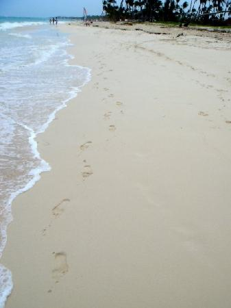 Luxury Bahia Principe Ambar: beach