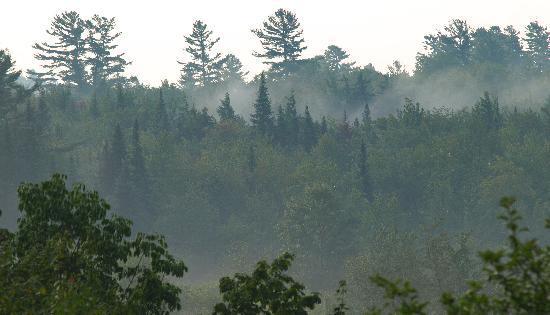 Irondequoit Inn: Morning Mist