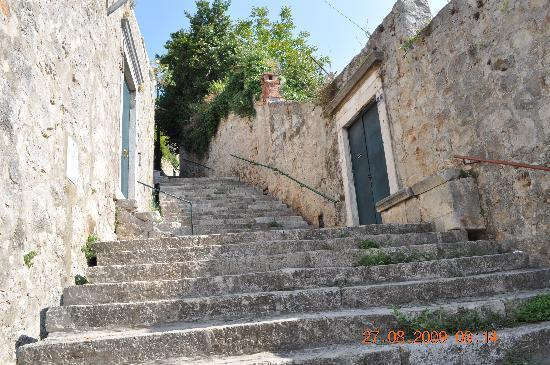 Villa Busovina: The steps to the villa