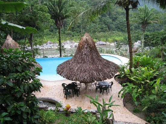 Villas Pico Bonito : The pool by the river