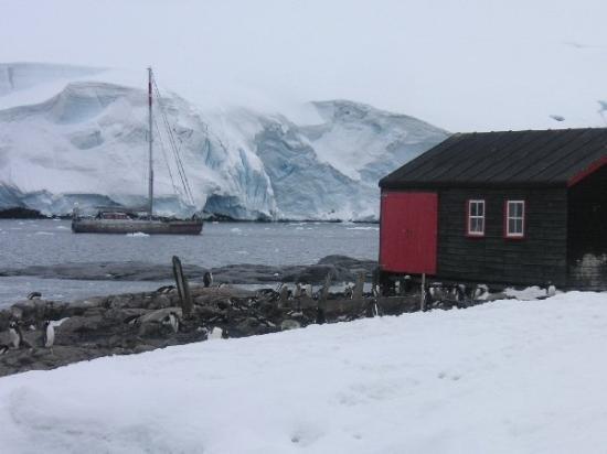 1 am picture of port lockroy antarctic peninsula for Port lockroy