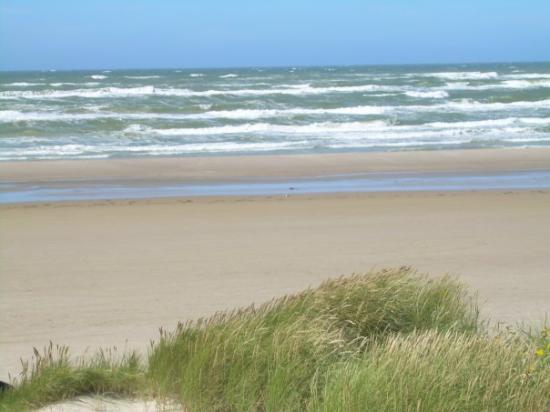 Blokhus, Dinamarca: Kan kan jo si at havet viser tenner ja...