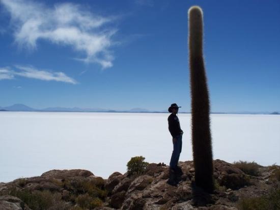 Salar de Uyuni: Los cactus crecen aproximadamente 1cm al año, hay cactus gigantes de más de 2.000 años