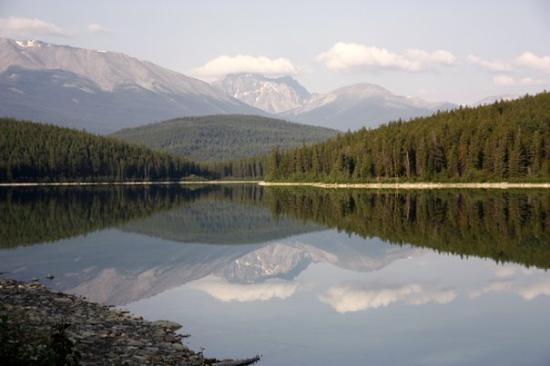 Pyramid and Patricia Lakes: Patricia Lake in Jasper
