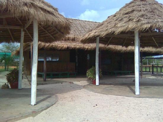 Otres Beach : Rabbit resort