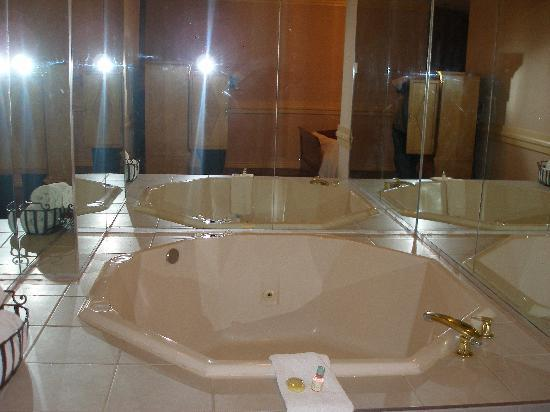 Delta Hotels By Marriott Edmonton Centre Suites Excellent Jacuzzi Stayed In Long Past Health