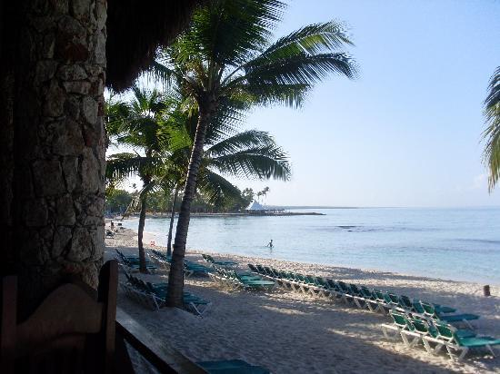 Viva Wyndham Dominicus Beach - An All-Inclusive Resort: spiaggia