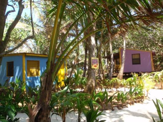 Little Corn Island, นิการากัว: Someone described it as 'Summer Camp for adults' - small cabins with no A/C, shared shower and b