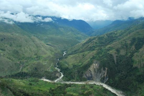 Papua لوحة