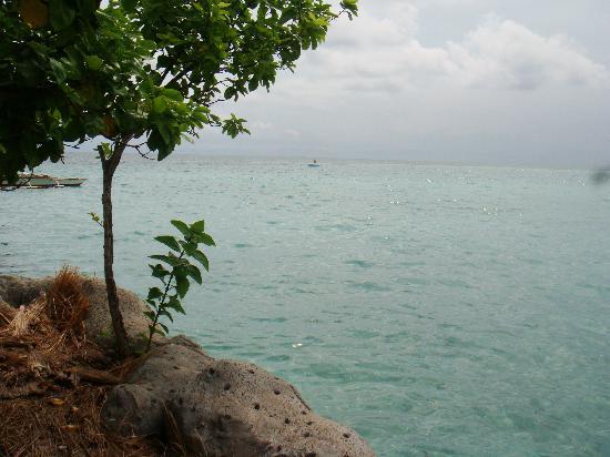 Nalusuan Island Resort: Nalusuan Resort