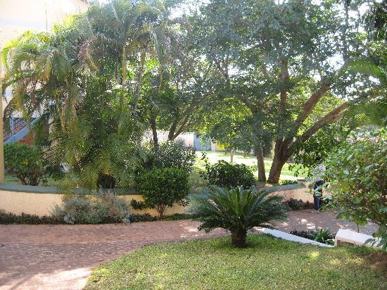Amadeus Garden: jardin