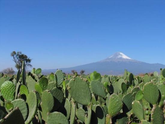 San Pedro Cholula, เม็กซิโก: Popocatepetl