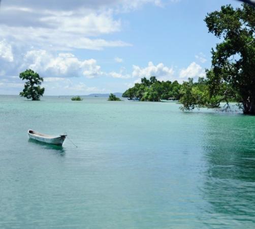 Sulawesi ภาพถ่าย