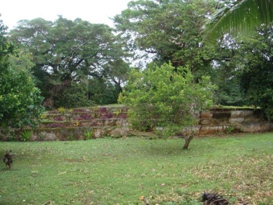 Tongatapu Island, Tonga: Terraced Tombs (Langi)