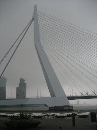Rotterdam-Erasmus bridge