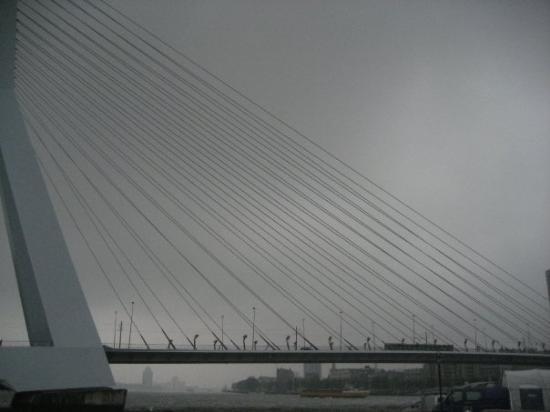 Erasmus Bridge: Rotterdam-Erasmus bringe