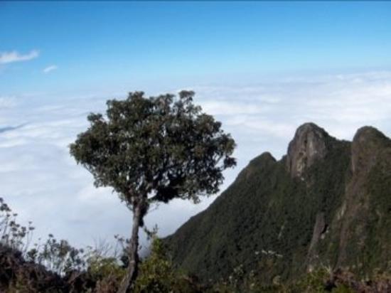 Cunha, SP: Pedra da Macela