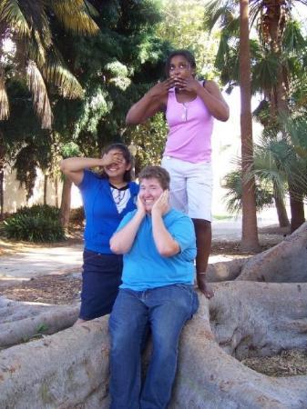 บัลบัวปาร์ค: balboa park, gnarly tree!