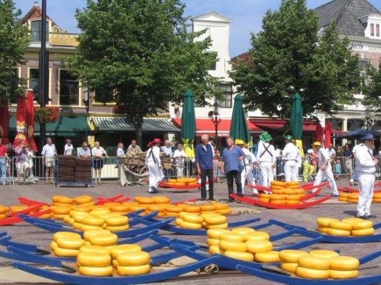 Alkmaar Cheese Market Picture Of Alkmaar North Holland Province Tripadvisor