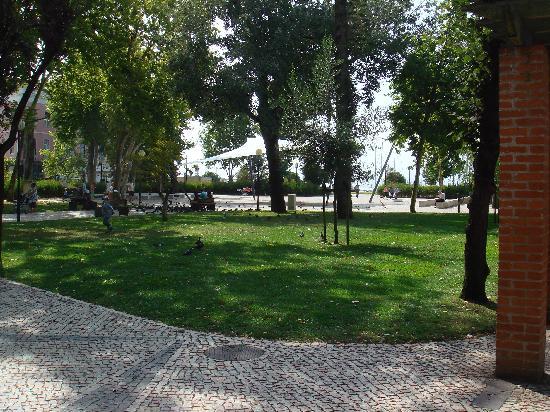 Hotel Costa de Prata 2: Parc aux pigons