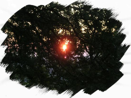 ..il sole che sorge  visto dal terrazzo dell'albergo Astoria