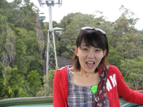 Skyrail Rainforest Cableway: 風吹的纜車搖呀搖的