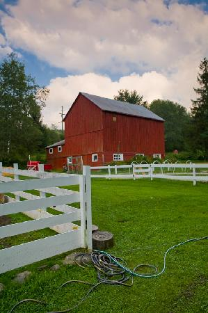 Handsome Brook Farm: The barn and farm