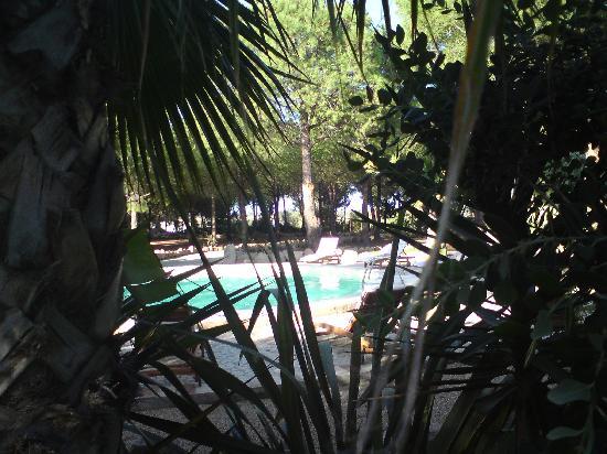 Villa del Borgo Relais: pool area