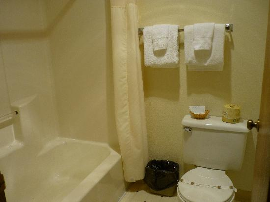 The Pacific Inn Motel: Bathroom