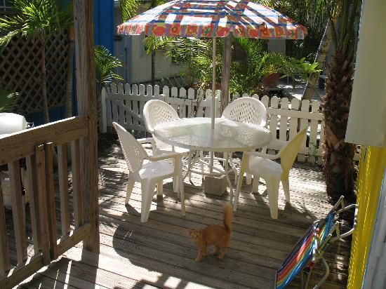 Beach Palms: Side porch