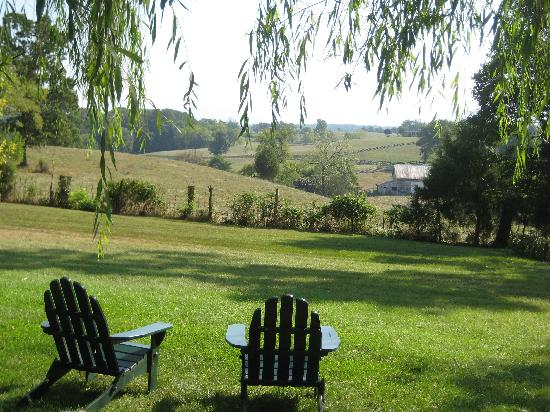 Piney Hill Bed & Breakfast: The view from the garden