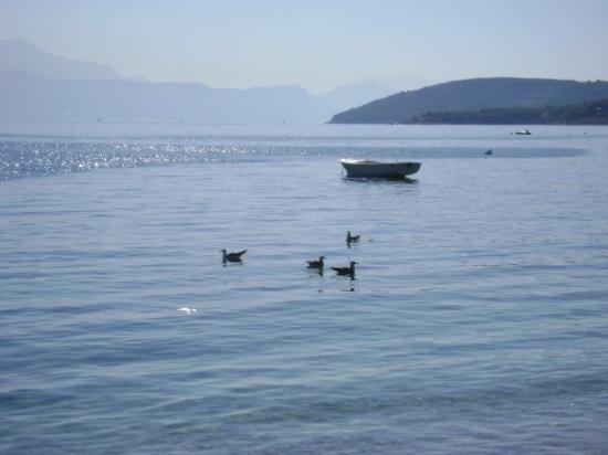 Ciovo Island, Croacia: Another beach view...