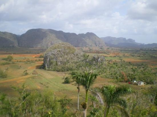 Vinales, คิวบา: Viñales valley