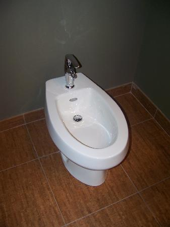 Champagne Lodge and Luxury Suites: cleansing toliet