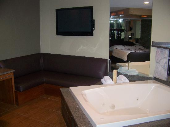 Champagne Lodge and Luxury Suites: Plasma tv
