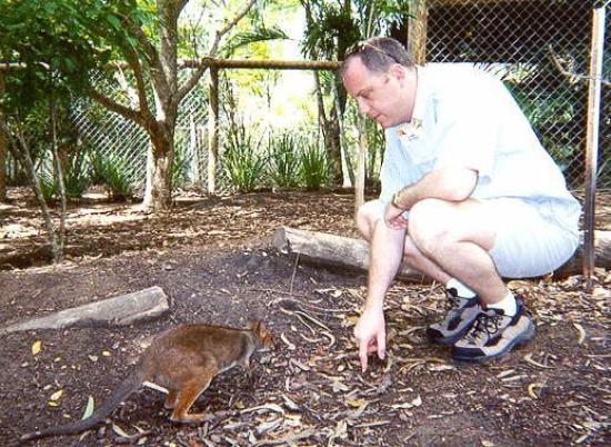 ทาวน์สวิลล์, ออสเตรเลีย: Not sure what this one was - Townesville, Australia