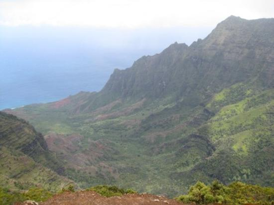 Koke'e State Park, HI: View from Kokee down to the Na Pali coast.