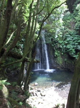 Bilde fra Ponta Delgada