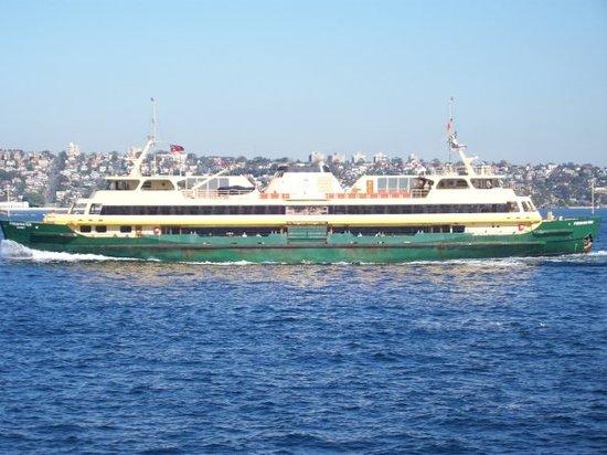 Sydney Ferries : Manly Ferry