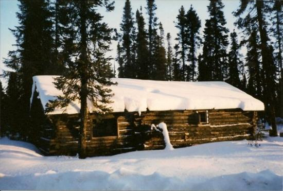 Labrador City, Canada: A cabin in the woods outside of town