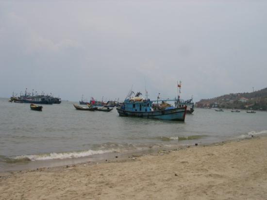 วุ้งเต่า, เวียดนาม: Vung Tau beach, 2008