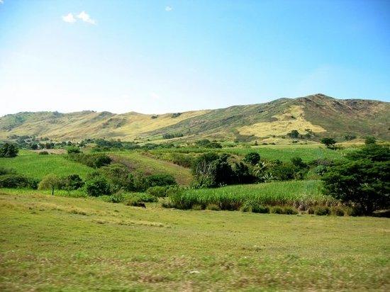 Zdjęcie Suva
