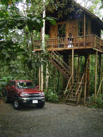 Tree Houses Hotel Costa Rica: Our tree house