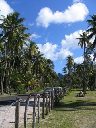 Moorea Photo