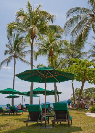 Shangri-La's Tanjung Aru Resort & Spa: Plenty of Sun Loungers