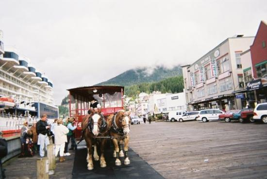 Alaska Foto Van Ketchikan Alaska Tripadvisor