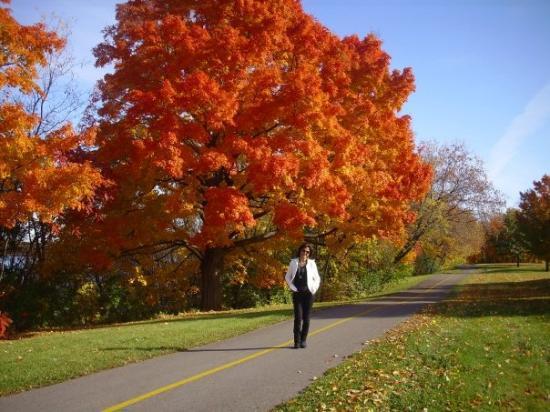 En Ottawa en un otoño precioso, miren el color de las hojas de los arboles