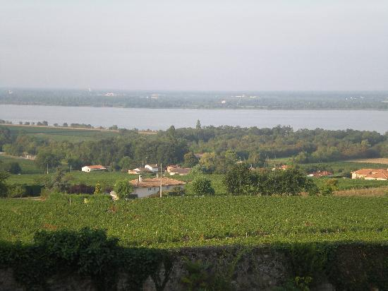 Chateau Bellevue: The view