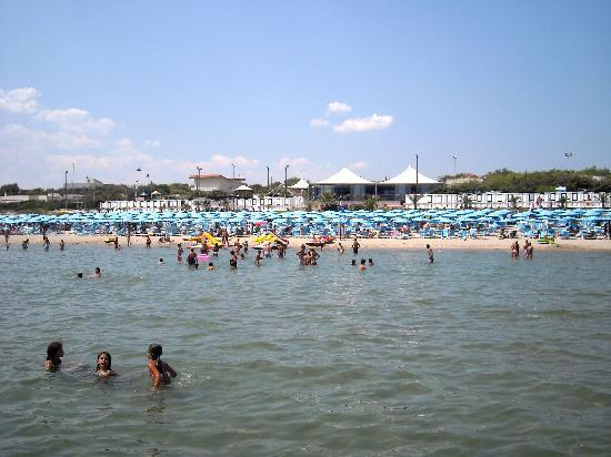 Nicotel Pineto: La spiaggia
