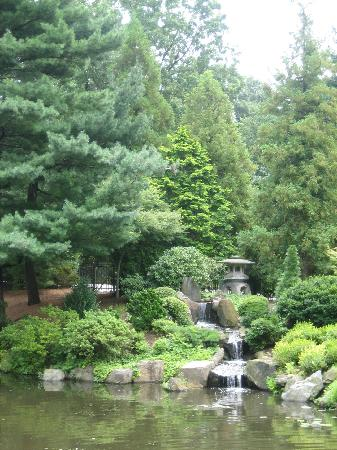 Shofuso Japanese House and Garden: Pomd & waterfall